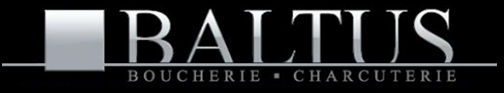 logo baltus